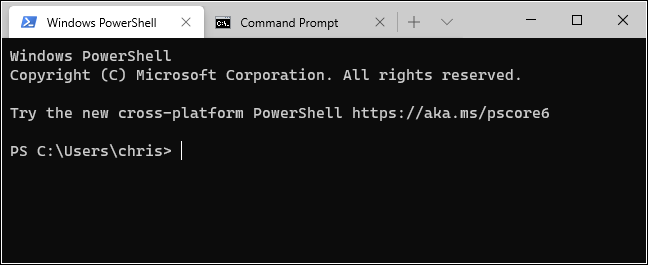 PowerShell and Command Prompt tabs in Windows Terminal.
