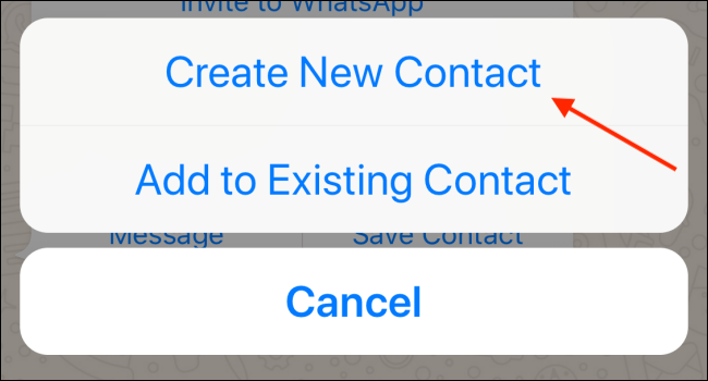 Tap Create New Contact in WhatsApp on iPhone