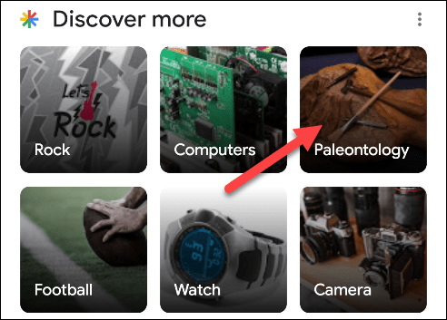 discover more section