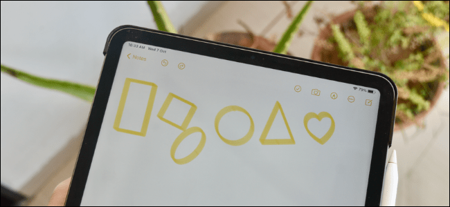 iPad User Creating Perfect Shapes in Notes App