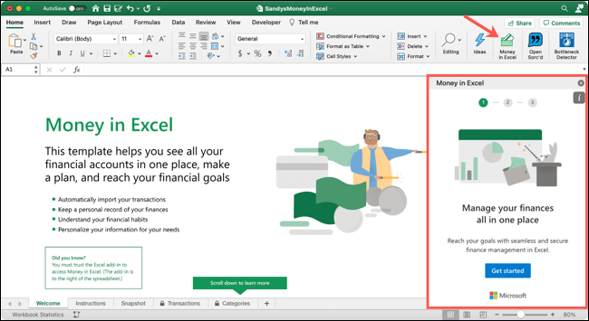 Click Money in Excel to display the pane