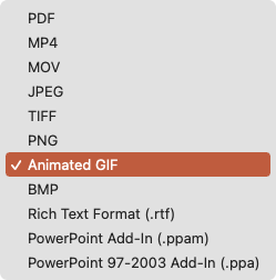 Click File Format and pick Animated GIF