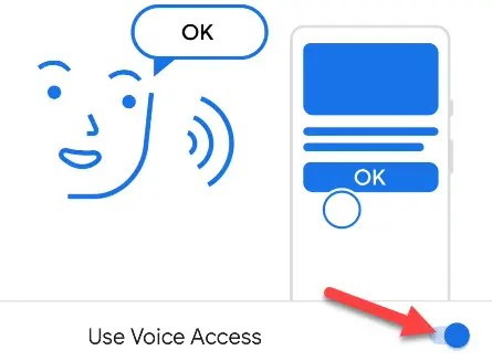 """Toggle the switch on to """"Use Voice Access."""""""