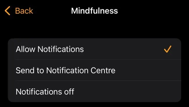 Toggle Mindfulness notifications on your Apple Watch