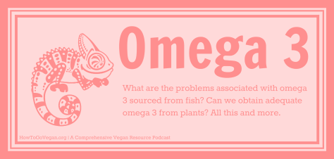 How to go vegan omega 3