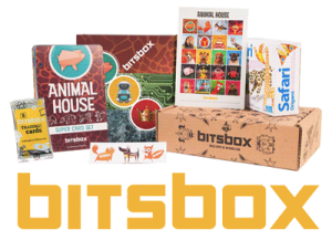 BitsBox Review
