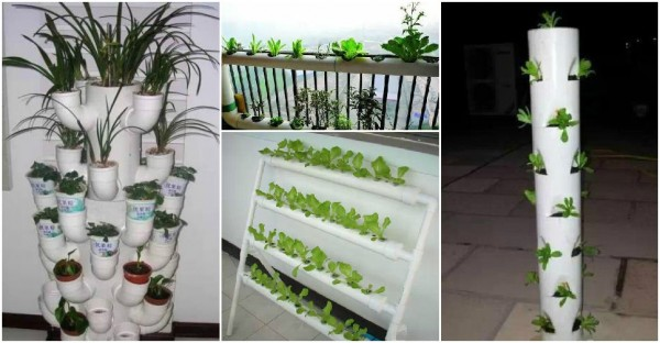 Gardening With PVC Tubes How To Instructions