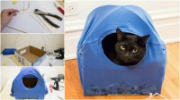 How To Make Your DIY Cat Tent | How To Instructions