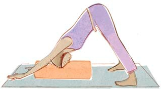 Supported Adho Mukha Svanasana - turn heels out, hips lifted.