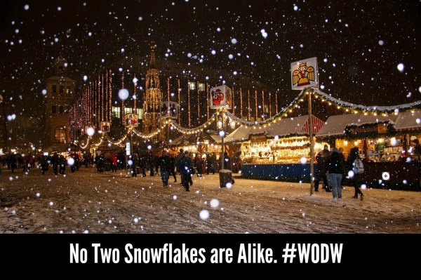 no-two-snowflakes-are-alike-wodw
