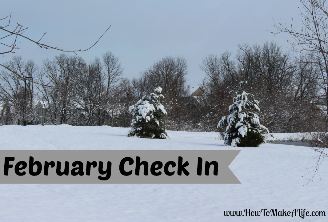 February Check In
