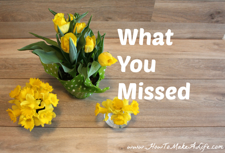 What You Missed This Week