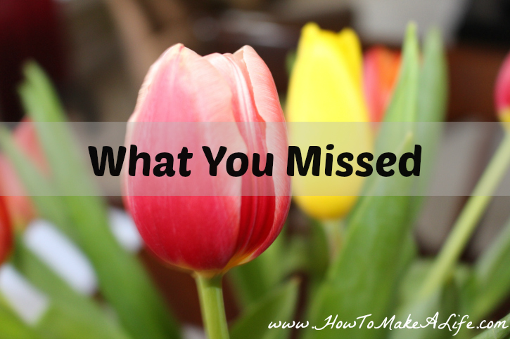 What You Missed