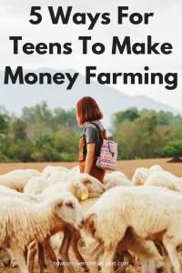 good ways to make money as a teenager, easy way for teens to make money, how to make money teens, how a teenager can make money, how to make money without a job teenager
