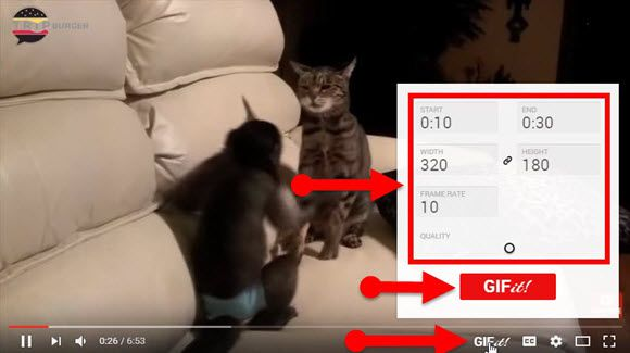 make your own gifs from YouTube videos