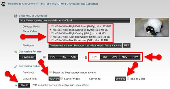 download a specific part of a YouTube video