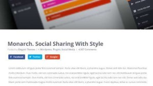 Monarch Best Social Share and Follow WordPress plugin
