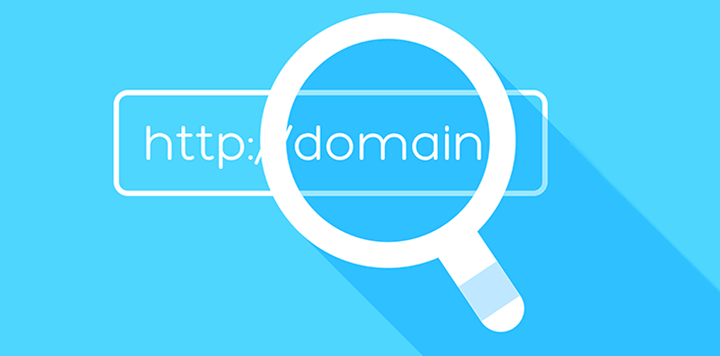 Domain Checker WordPress plugin