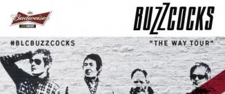 Ir al evento: BUZZCOCKS (BUDWEISER LIVE CIRCUIT) en Madrid