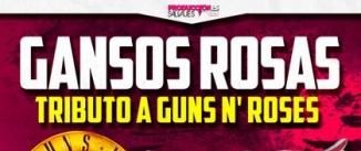 Ir al evento: GANSOS ROSAS vs AEROTRIP. Tributos a GUNS AND ROSES y AEROSMITH