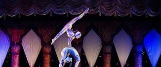 Ir al evento: Cirque du Soleil - AMALUNA