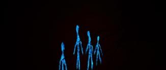 """Ir al evento: """"And at night?"""", exposición de arte cambiante de Sina Beltrão"""