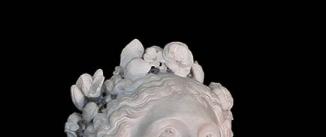 Ir al evento: LAS ÁNIMAS DE BERNINI. Arte en Roma para la corte española