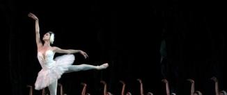 Ir al evento: EL LAGO DE LOS CISNES Ballet Nacional de Cuba