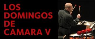 Ir al evento: LOS DOMINGOS DE CÁMARA V