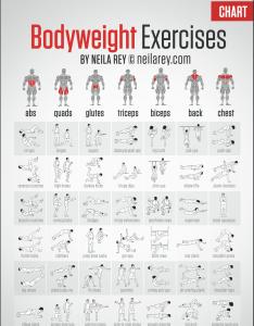 Weight training exercises chart also kenindlecomfortzone rh