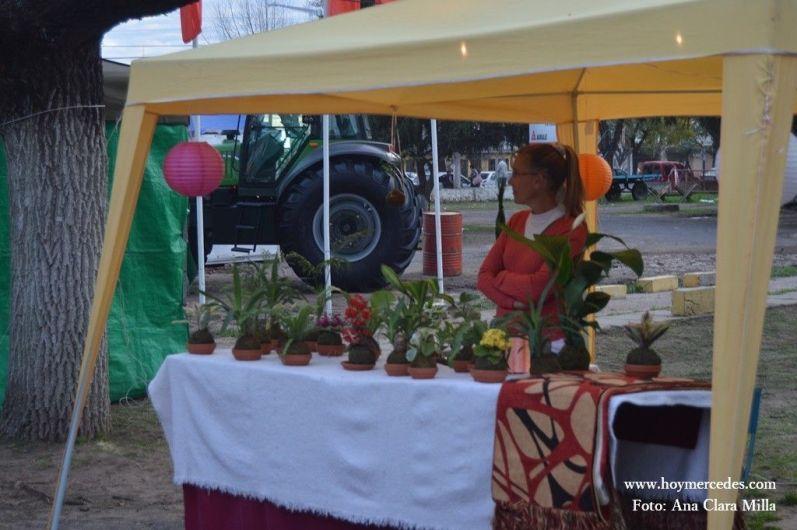 FiestaSalame.12.09.2014007