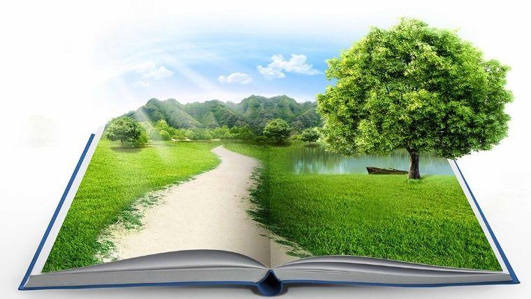 La educación ambiental es importante