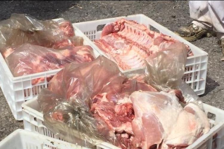 Senasa decomisó y destruyó carne de cerdo fresca en la localidad de Suipacha