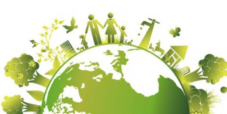 Desarrollando políticas ambientales