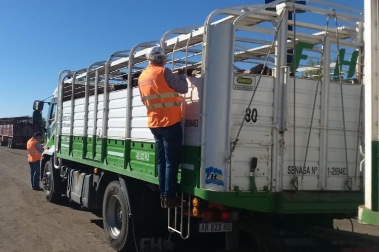 Controles a transportes con alimentos y animales en pie en la región centro y norte bonaerense