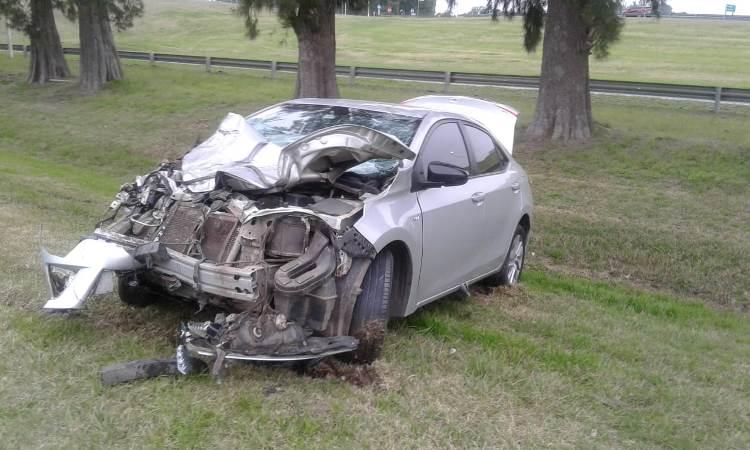 Ruta 5: vehículo embiste a un caballo suelto