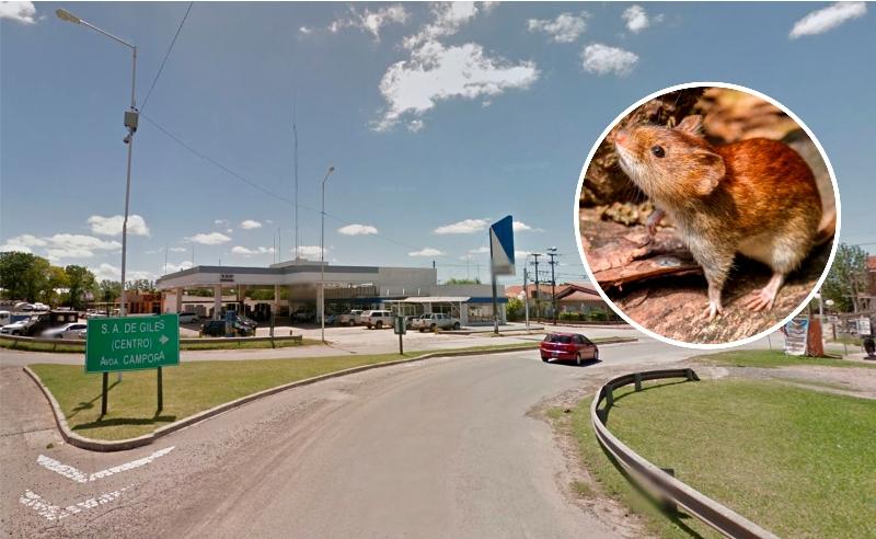 Confirman caso de hantavirus en San Andrés de Giles