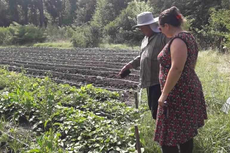 La importancia de registrar la producción de la agricultura familiar
