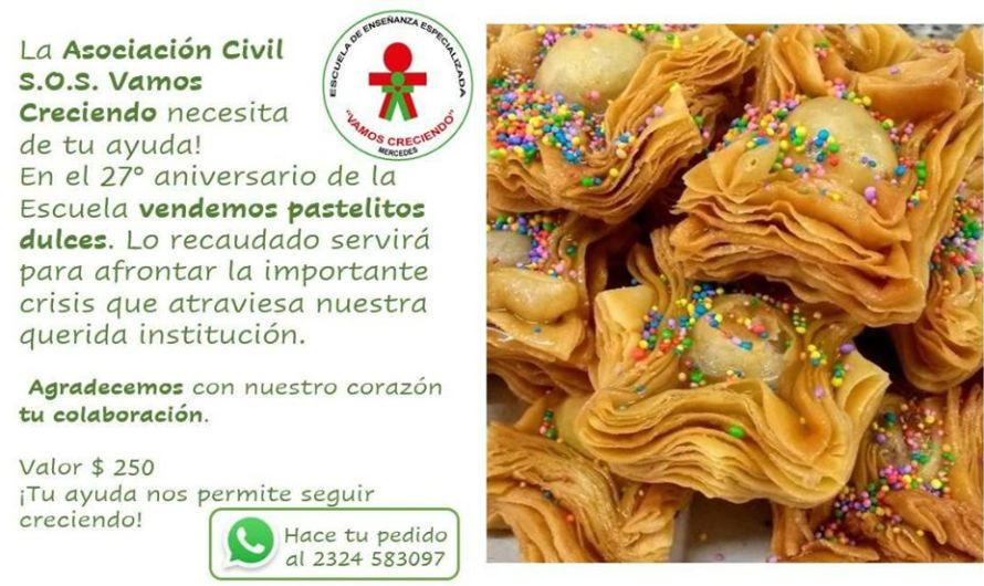 Solidaridad con Vamos Creciendo: colaborá comprando pasteles
