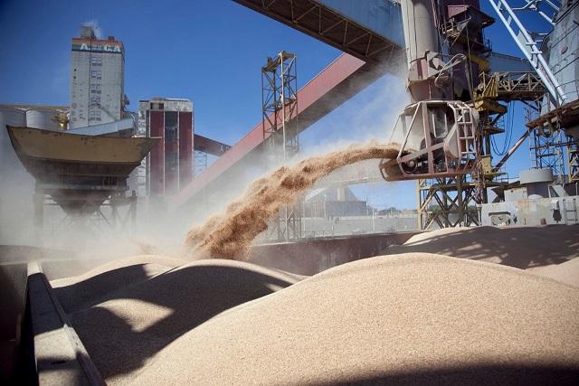 Inscripción de empresas que quieran exportar cebada, soja, maíz y sorgo a China