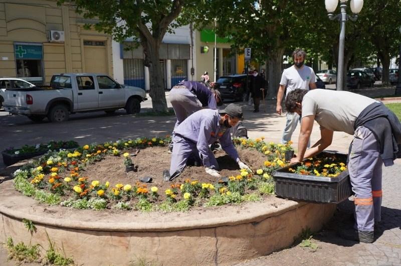 El vivero biotecnológico comenzó con el trabajo en espacios públicos