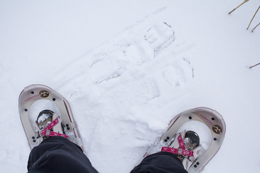 My Snow Shoes