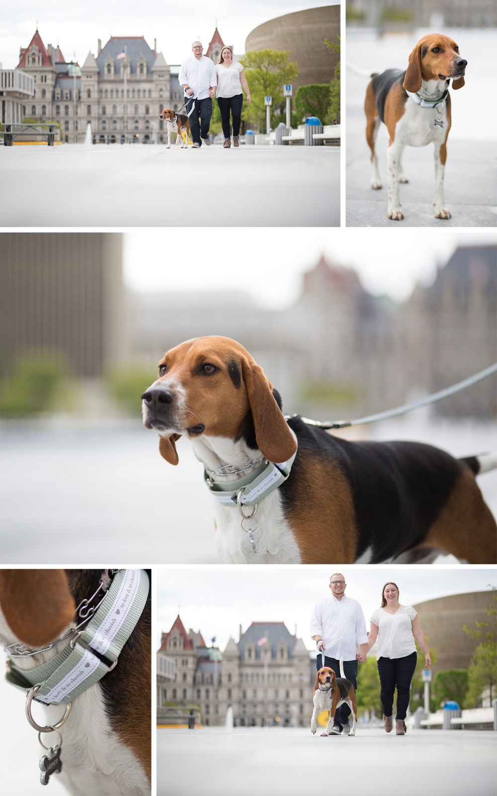 Downtown-Albany-Engagement-Photos-with-Dog