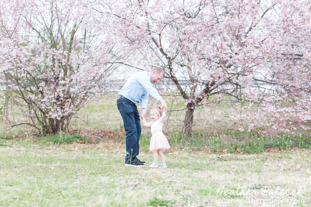 father and daughter dance under cherry blossom tree