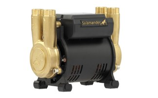 Salamander Pumps