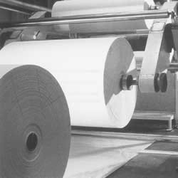 The Mass Production of Paper