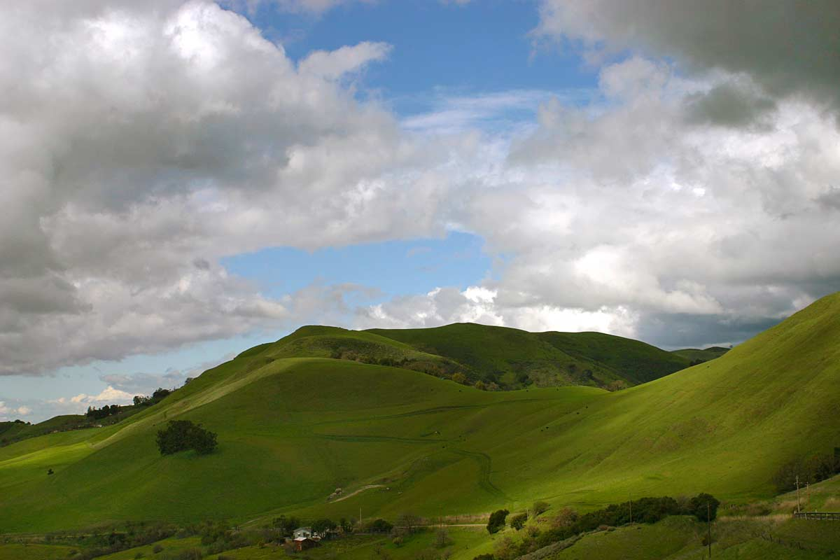 Green Hill With Puffy Clouds Photo