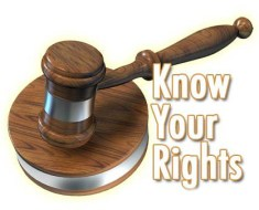 Rights Within the Employment Relationship