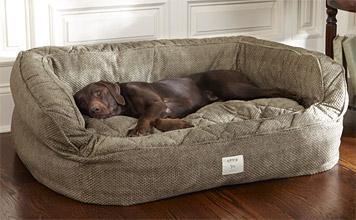 Top 10 Best Dog Beds Money Can Buy