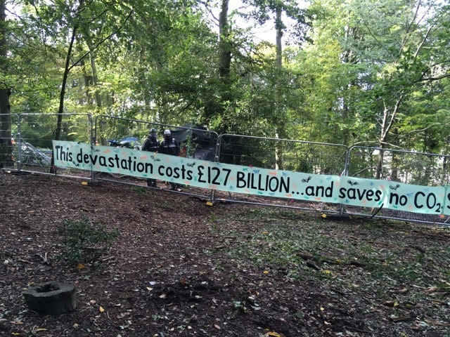 Breaking news: HS2 to suspend all felling at Jones' Hill Wood until full ecology surveys are completed
